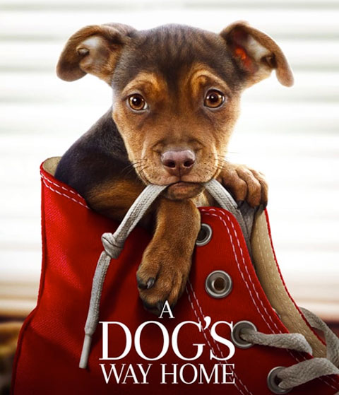 A Dog's Way Home (HD) Vudu / Movies Anywhere Redeem